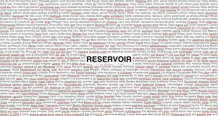reservoir of unique words